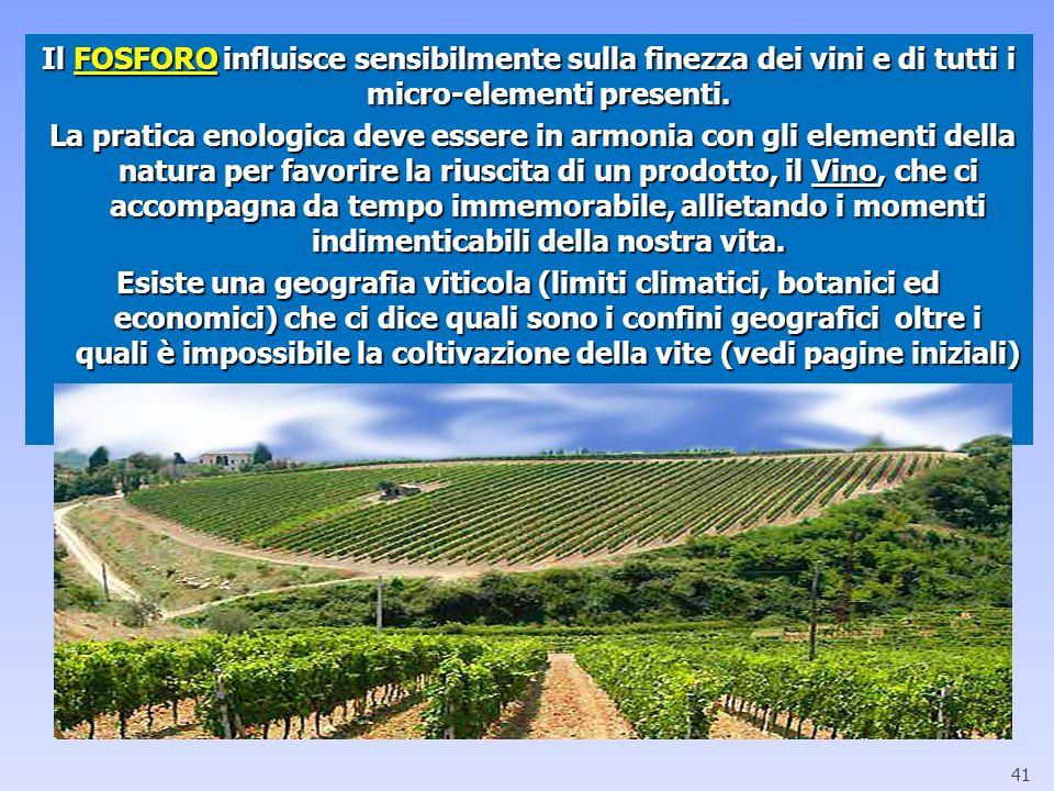 Il FOSFORO influisce sensibilmente sulla finezza dei vini e di tutti i micro-elementi presenti. La pratica enologica deve essere in armonia con gli el