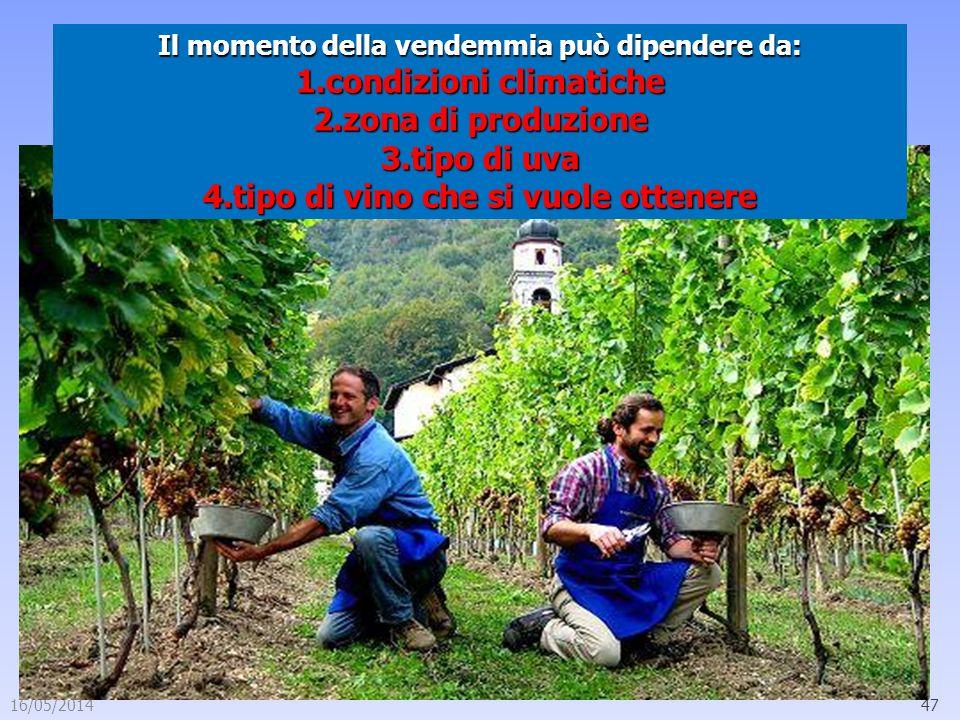 16/05/201447 Il momento della vendemmia può dipendere da: 1.condizioni climatiche 2.zona di produzione 3.tipo di uva 4.tipo di vino che si vuole otten