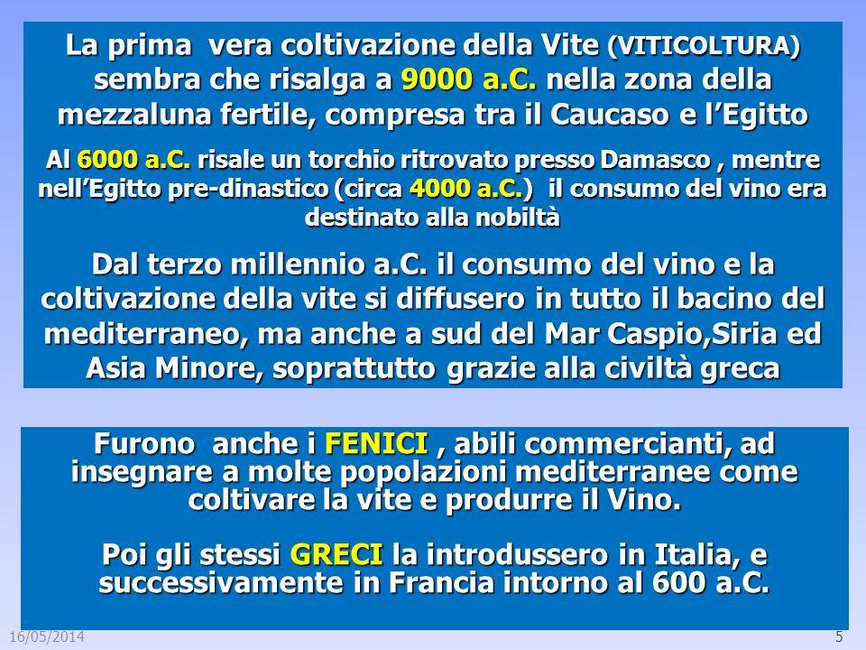 16/05/20145 La prima vera coltivazione della Vite (VITICOLTURA) sembra che risalga a 9000 a.C. nella zona della mezzaluna fertile, compresa tra il Cau