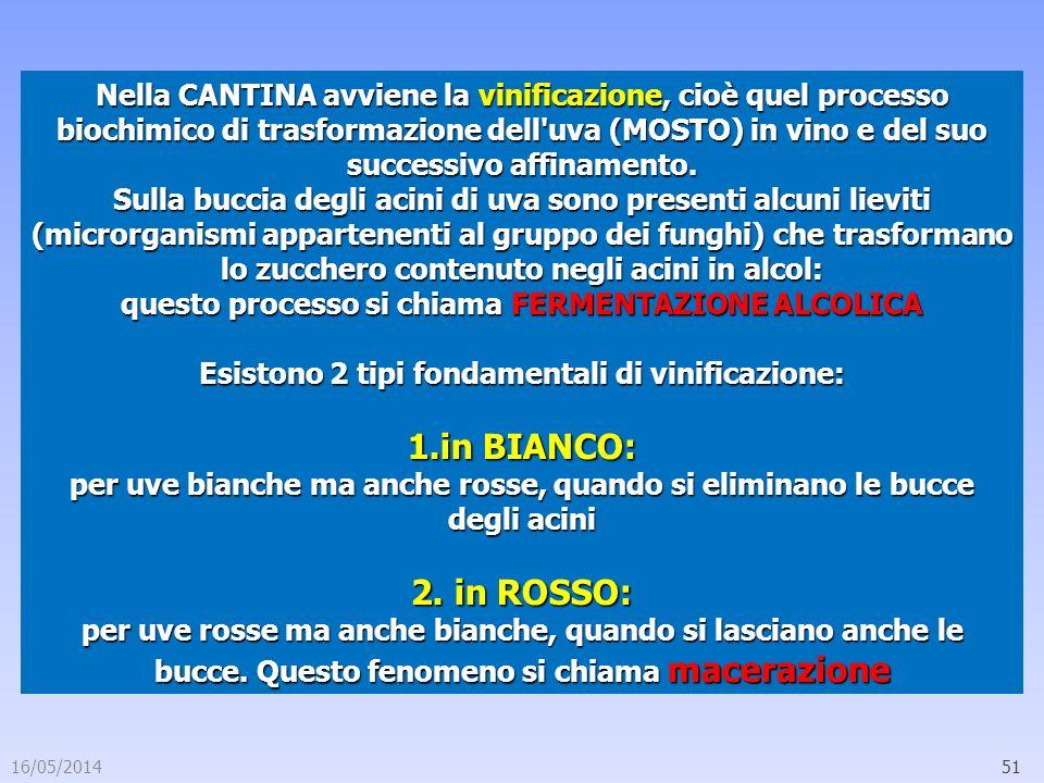 16/05/201451 Nella CANTINA avviene la vinificazione, cioè quel processo biochimico di trasformazione dell'uva (MOSTO) in vino e del suo successivo aff