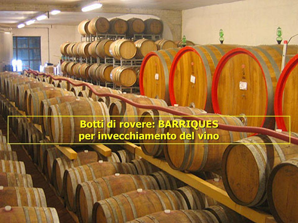 16/05/201454 Botti di rovere: BARRIQUES per invecchiamento del vino