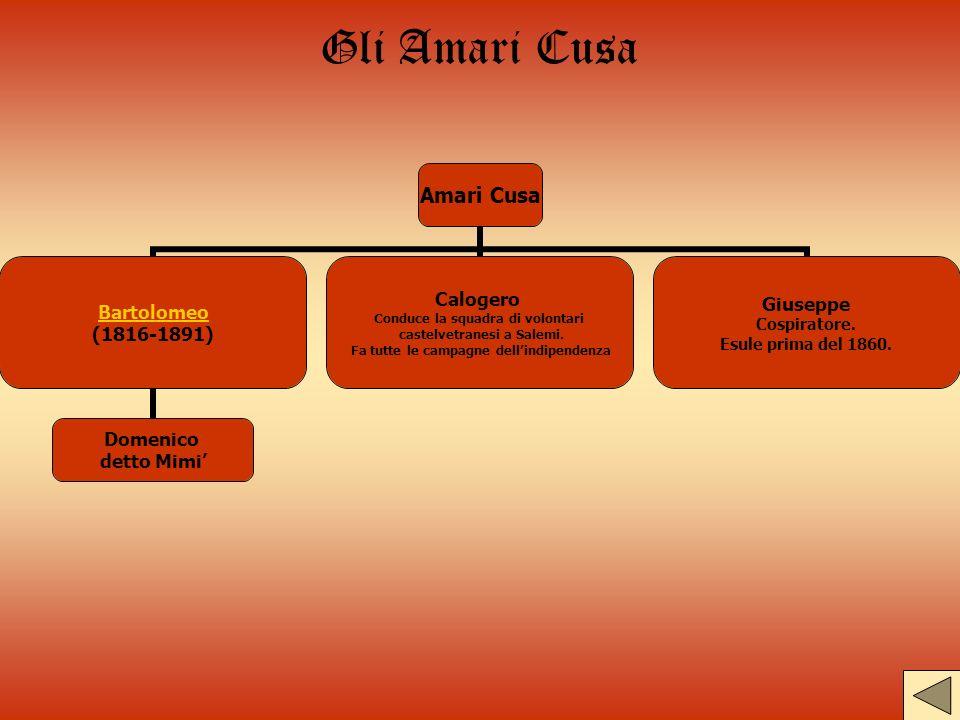 Gli Amari Cusa Amari Cusa Bartolomeo (1816-1891) Domenico detto Mimi Calogero Conduce la squadra di volontari castelvetranesi a Salemi. Fa tutte le ca
