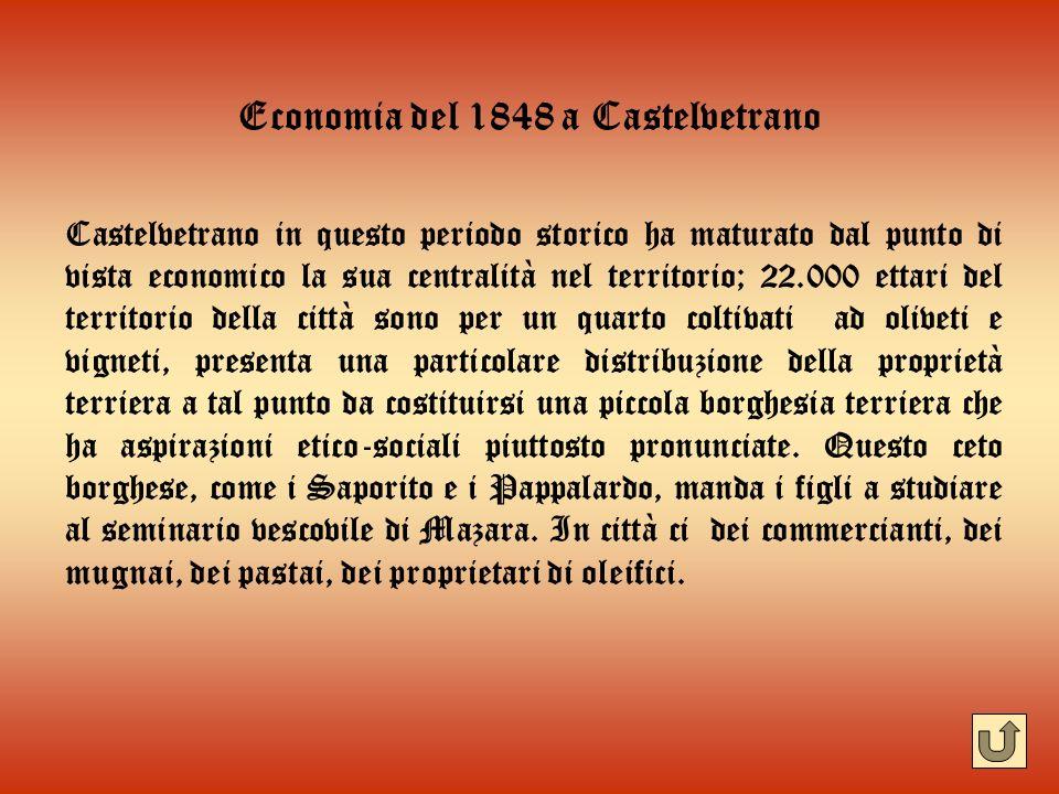 Economia del 1848 a Castelvetrano Castelvetrano in questo periodo storico ha maturato dal punto di vista economico la sua centralità nel territorio; 2