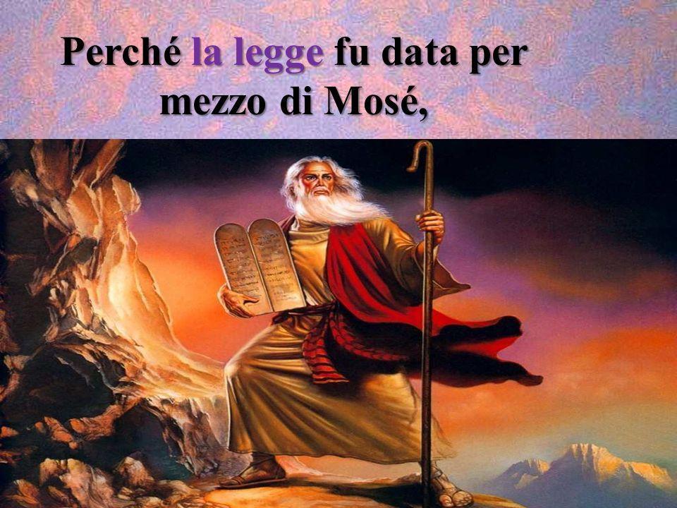 A quanti però lo hanno accolto ha dato potere di diventare figli di Dio: a quelli che credono nel suo nome, i quali, non da sangue né da volere di car