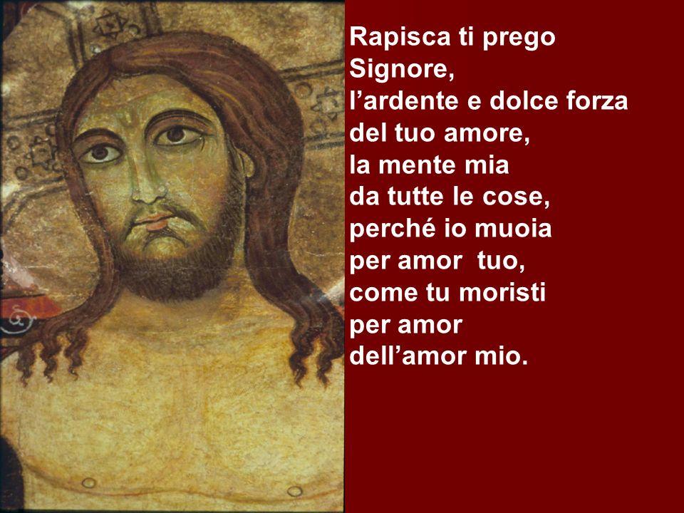Rapisca ti prego Signore, lardente e dolce forza del tuo amore, la mente mia da tutte le cose, perché io muoia per amor tuo, come tu moristi per amor dellamor mio.