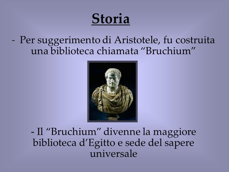 Storia - Per suggerimento di Aristotele, fu costruita una biblioteca chiamata Bruchium - Il Bruchium divenne la maggiore biblioteca dEgitto e sede del