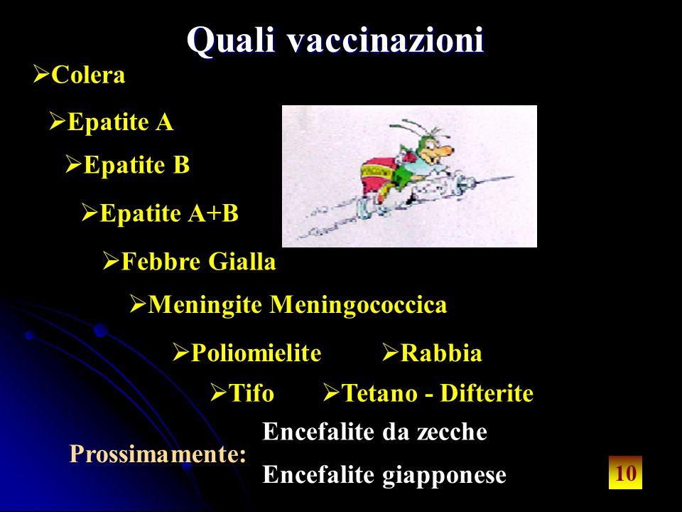 10 Quali vaccinazioni Colera Epatite A Epatite B Epatite A+B Febbre Gialla Meningite Meningococcica Poliomielite Rabbia Tifo 10 Prossimamente: Encefalite da zecche Encefalite giapponese Tetano - Difterite