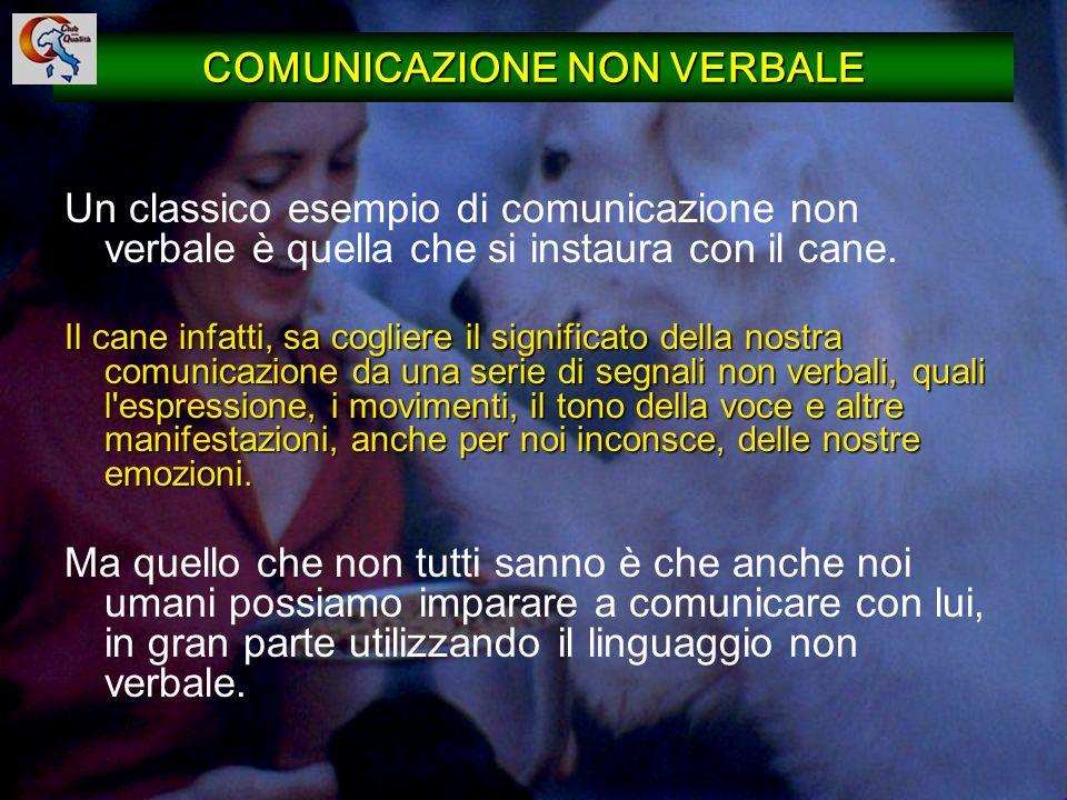 33 COMUNICAZIONE NON VERBALE Un classico esempio di comunicazione non verbale è quella che si instaura con il cane. Il cane infatti, sa cogliere il si