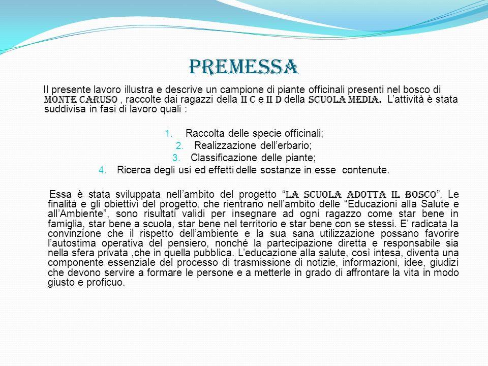 Descrizione Paesaggistica La zona di nostro interesse si trova nel Comune di Avigliano e comprende unarea che parte grosso modo dal Monte Carmine (1228m) e prosegue verso Nord-Ovest seguendo la cresta dei rilievi che culminano nel Monte Caruso (1230m), discendendo infine lungo il versante che domina il territorio del Comune di Filiano.