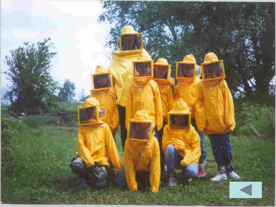 Per poterci avvicinare alle arnie abbiamo indossato delle tute protettive.
