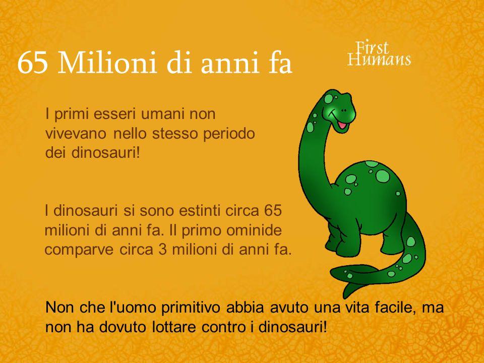 65 Milioni di anni fa I dinosauri si sono estinti circa 65 milioni di anni fa. Il primo ominide comparve circa 3 milioni di anni fa. I primi esseri um