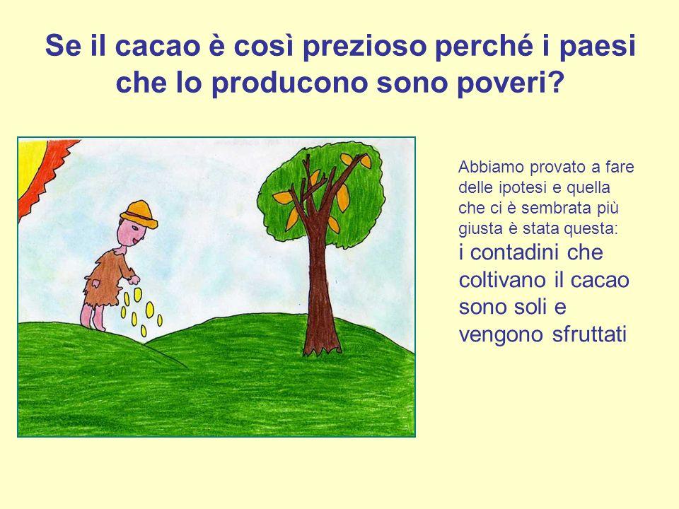 Se il cacao è così prezioso perché i paesi che lo producono sono poveri? Abbiamo provato a fare delle ipotesi e quella che ci è sembrata più giusta è