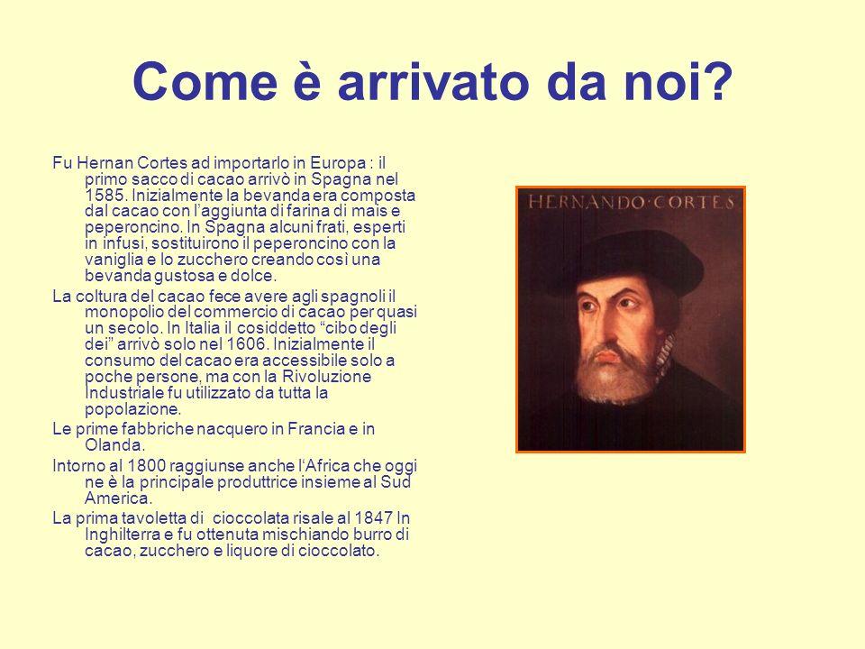 Come è arrivato da noi? Fu Hernan Cortes ad importarlo in Europa : il primo sacco di cacao arrivò in Spagna nel 1585. Inizialmente la bevanda era comp