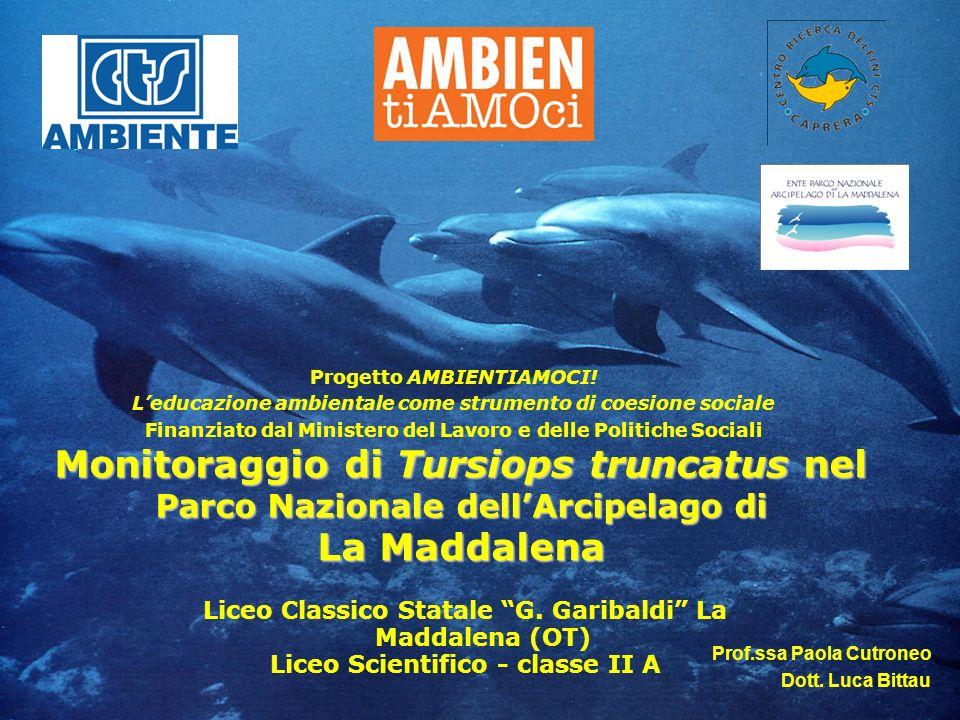 Monitoraggio di Tursiops truncatus nel Parco Nazionale dellArcipelago di La Maddalena Progetto AMBIENTIAMOCI! Leducazione ambientale come strumento di