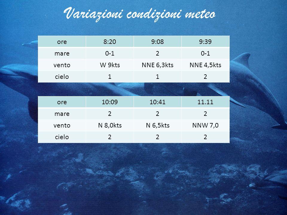 Variazioni condizioni meteo ore8:209:089:39 mare0-12 ventoW 9ktsNNE 6,3ktsNNE 4,5kts cielo112 ore10:0910:4111.11 mare222 ventoN 8,0ktsN 6,5ktsNNW 7,0