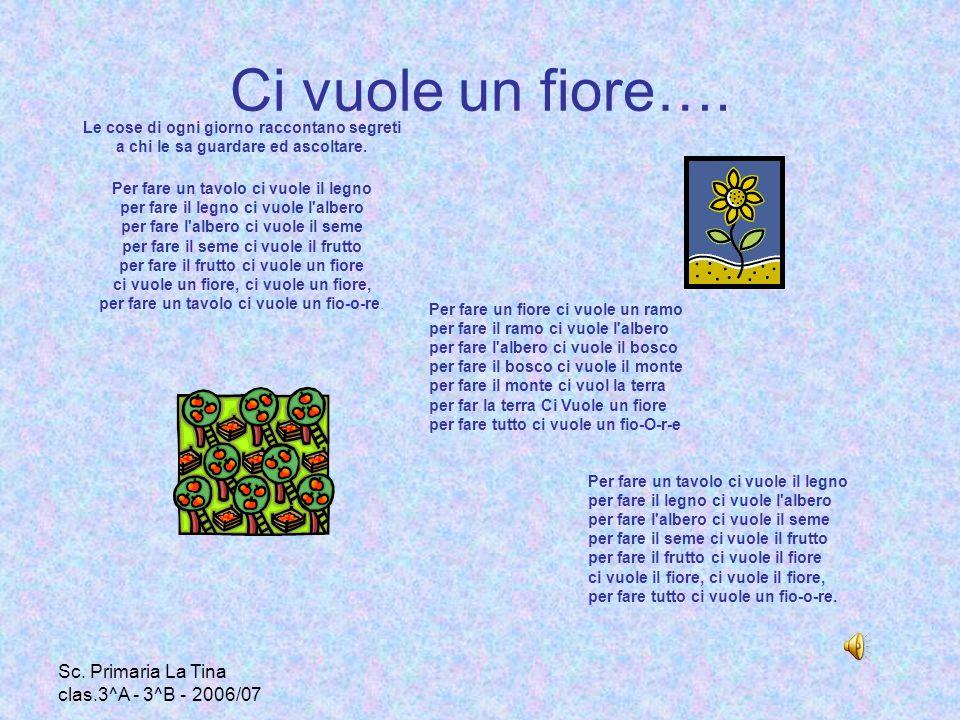 Sc.Primaria La Tina clas.3^A - 3^B - 2006/07 CONOSCO LE PIANTE Leggi le definizioni e rispondi.