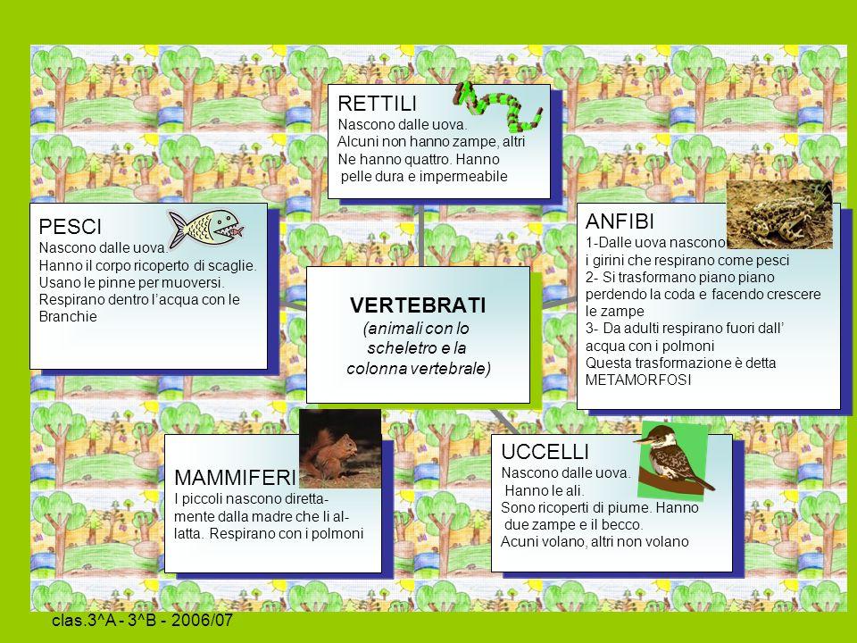 Sc.Primaria La Tina clas.3^A - 3^B - 2006/07 Ci vuole un fiore….
