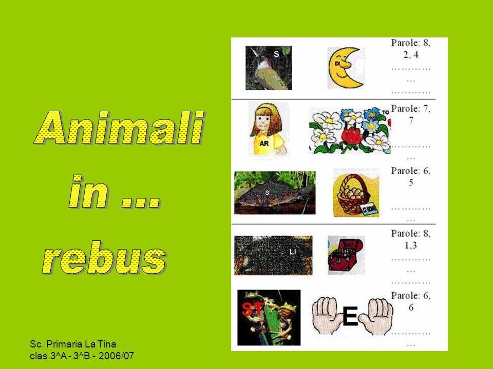 Sc.Primaria La Tina clas.3^A - 3^B - 2006/07 CONOSCO GLI ANIMALI Leggi le definizioni e rispondi.