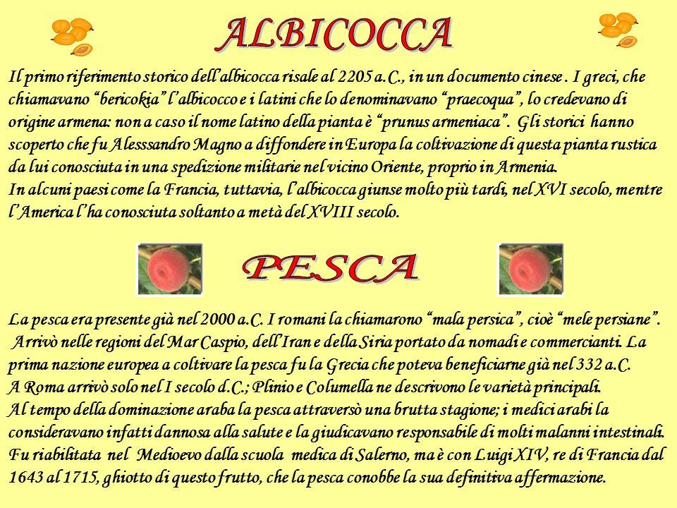 Il primo riferimento storico dellalbicocca risale al 2205 a.C., in un documento cinese. I greci, che chiamavano bericokia lalbicocco e i latini che lo