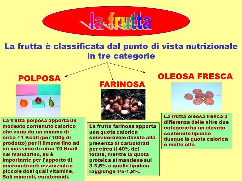 La frutta è classificata dal punto di vista nutrizionale in tre categorie POLPOSA FARINOSA OLEOSA FRESCA La frutta polposa apporta un modesto contenut
