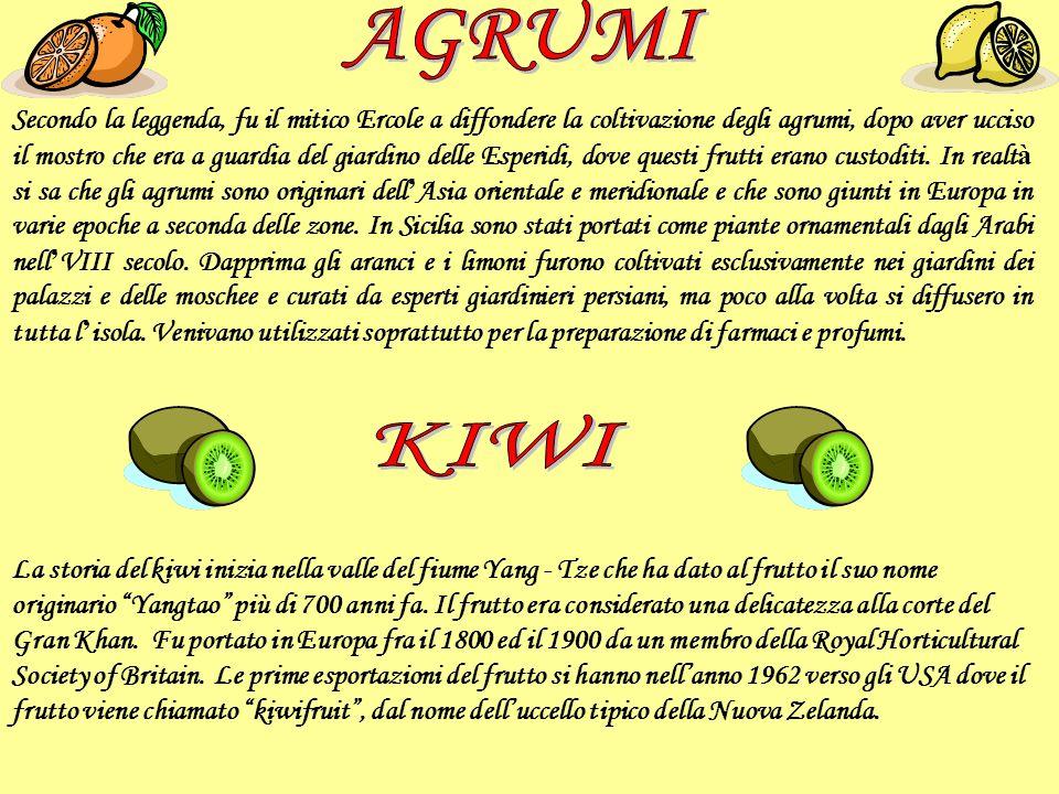 Secondo la leggenda, fu il mitico Ercole a diffondere la coltivazione degli agrumi, dopo aver ucciso il mostro che era a guardia del giardino delle Es