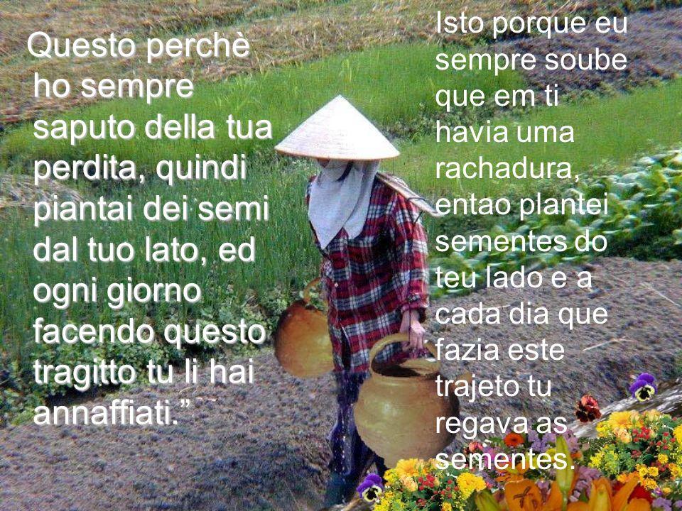 Lanziana donna sorrise, Hai notato che ci sono dei fiori dal tuo lato del percorso mentre nellaltro non ce ne sono.