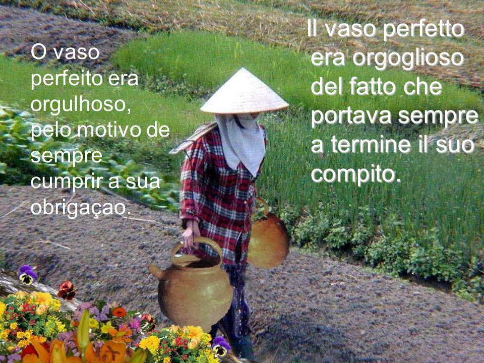 Fu così per due lunghi anni, lanziana donna portava a casa un vaso e mezzo di acqua.