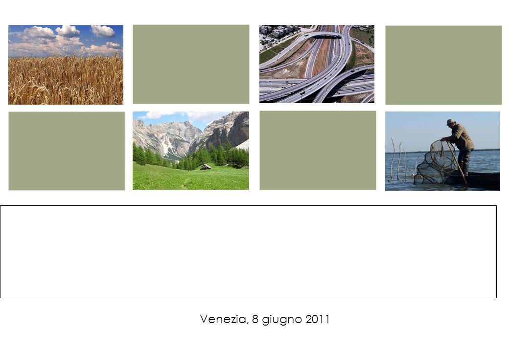 IL RAFFORZAMENTO DEL SISTEMA IPA ALLINTERNO DEL CICLO DI PROGRAMMAZIONE REGIONALE Venezia, 8 giugno 2011