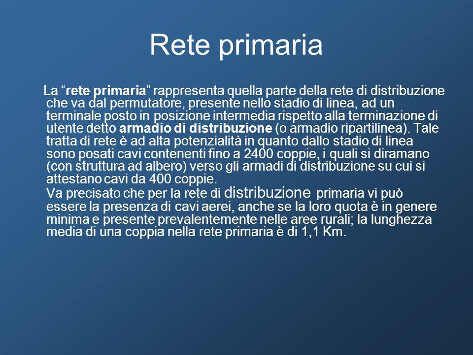 Rete primaria La rete primaria rappresenta quella parte della rete di distribuzione che va dal permutatore, presente nello stadio di linea, ad un term