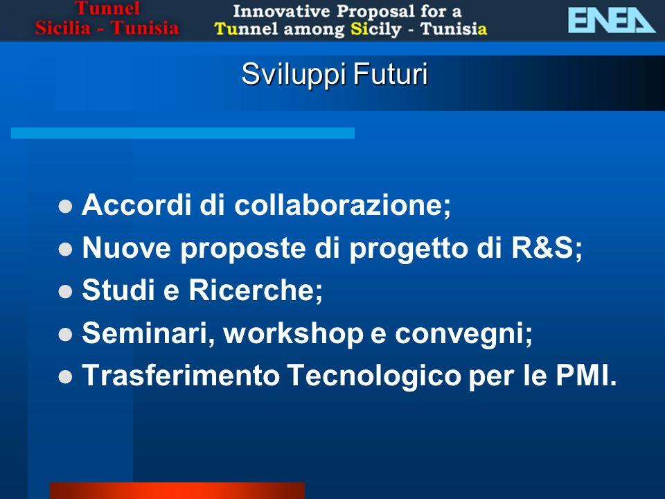 Sviluppi Futuri Accordi di collaborazione; Nuove proposte di progetto di R&S; Studi e Ricerche; Seminari, workshop e convegni; Trasferimento Tecnologico per le PMI.