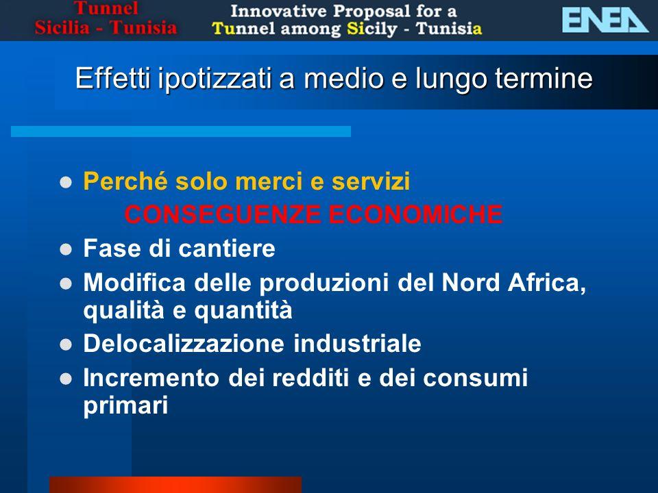 Effetti ipotizzati a medio e lungo termine Perché solo merci e servizi CONSEGUENZE ECONOMICHE Fase di cantiere Modifica delle produzioni del Nord Africa, qualità e quantità Delocalizzazione industriale Incremento dei redditi e dei consumi primari
