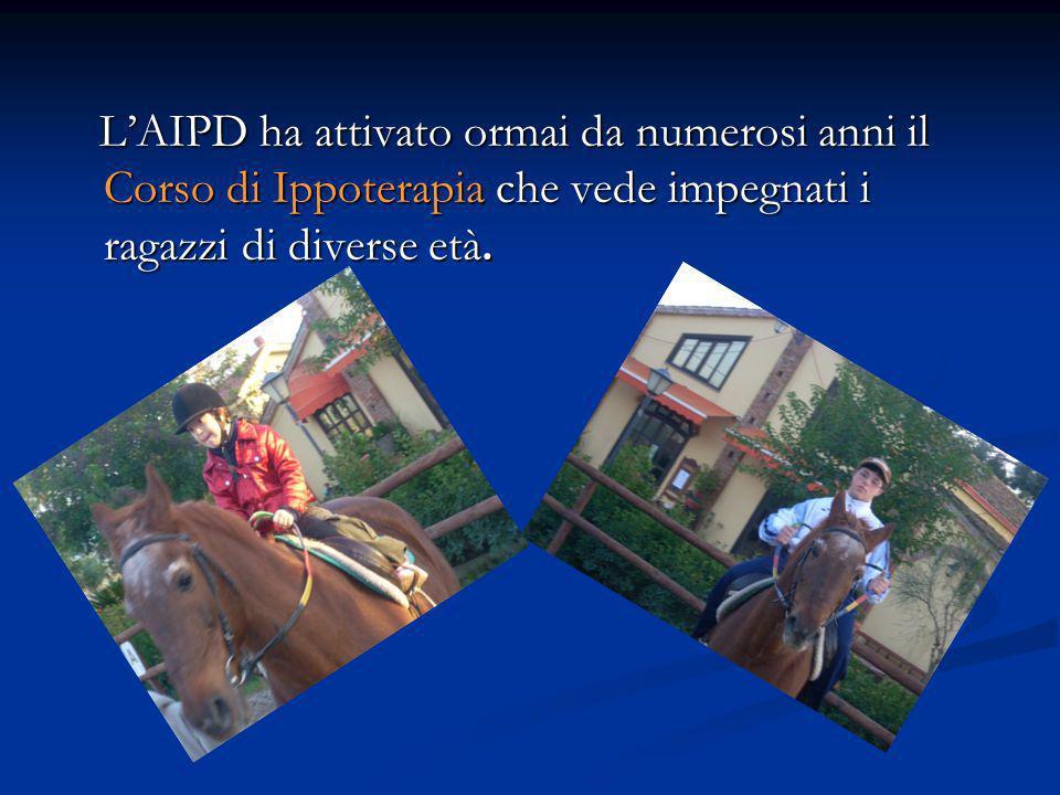 LAIPD ha attivato ormai da numerosi anni il Corso di Ippoterapia che vede impegnati i ragazzi di diverse età.