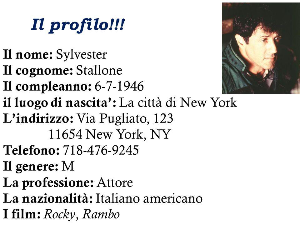 Il nome: Sylvester Il cognome: Stallone Il compleanno: 6-7-1946 il luogo di nascita: La città di New York Lindirizzo: Via Pugliato, 123 11654 New York, NY Telefono: 718-476-9245 Il genere: M La professione: Attore La nazionalità: Italiano americano I film: Rocky, Rambo Il profilo!!!