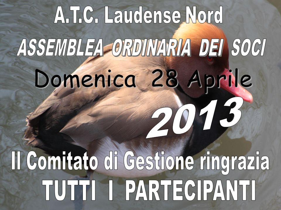 LE ZONE ROSSE Bertonico Camairago Caselle Lurani Comazzo / Merlino Cavenago ( costituita 2011 ) Poligono di tiro ( Lodi ) Università ( Lodi ) S.