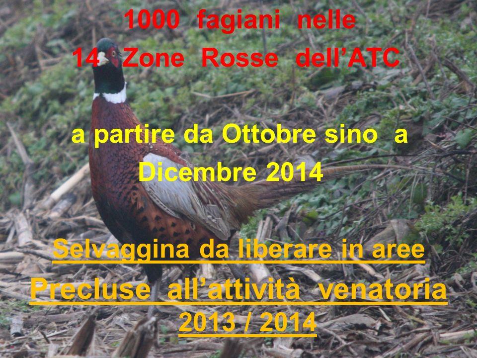 1000 fagiani nelle 14 Zone Rosse dellATC a partire da Ottobre sino a Dicembre 2014 Selvaggina da liberare in aree Precluse allattività venatoria 2013