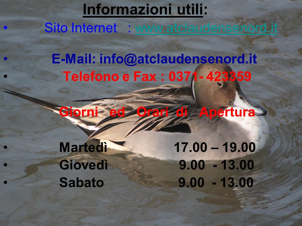 Informazioni utili: Sito Internet : www.atclaudensenord.itwww.atclaudensenord.it E-Mail: info@atclaudensenord.it Telefono e Fax : 0371- 423359 Giorni
