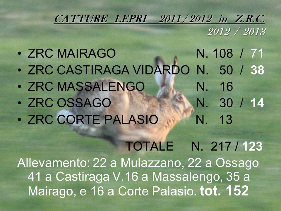 CATTURE LEPRI 2011 / 2012 in Z.R.C. 2012 / 2013 ZRC MAIRAGO N. 108 / 71 ZRC CASTIRAGA VIDARDO N. 50 / 38 ZRC MASSALENGO N. 16 ZRC OSSAGO N. 30 / 14 ZR