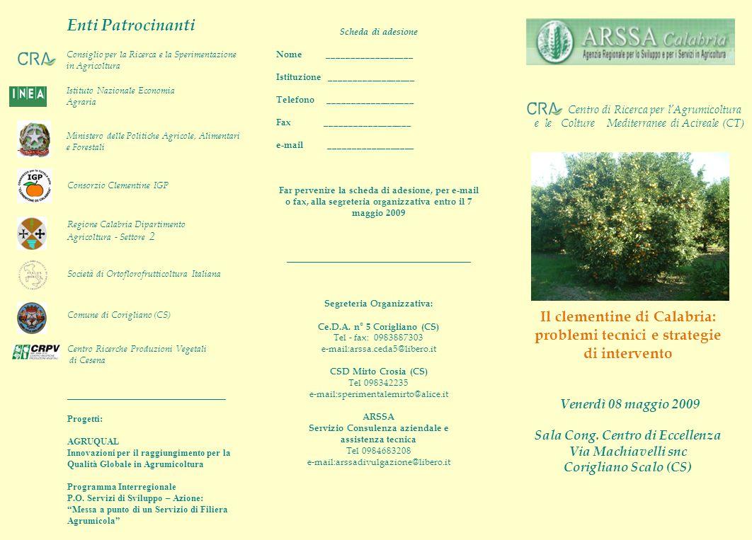 Il clementine di Calabria: problemi tecnici e strategie di intervento Venerdì 08 maggio 2009 Sala Cong.