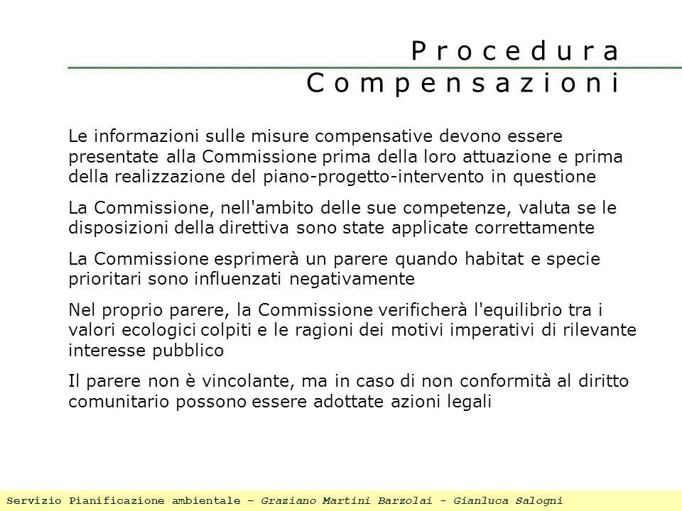 Le informazioni sulle misure compensative devono essere presentate alla Commissione prima della loro attuazione e prima della realizzazione del piano-