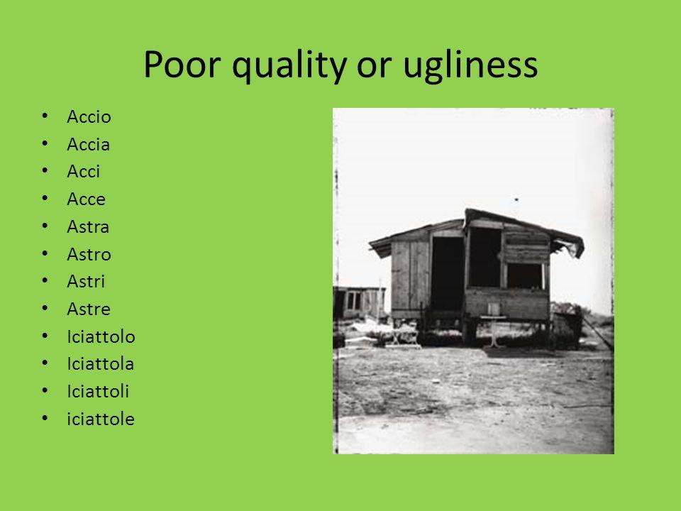 Poor quality or ugliness Accio Accia Acci Acce Astra Astro Astri Astre Iciattolo Iciattola Iciattoli iciattole