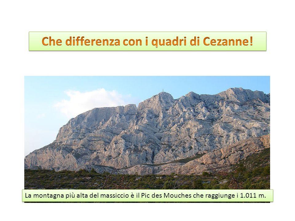 La montagna più alta del massiccio è il Pic des Mouches che raggiunge i 1.011 m.