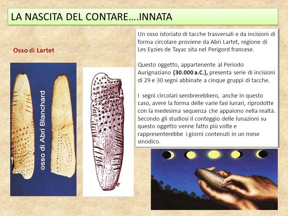 LA NASCITA DEL CONTARE….INNATA Osso di Lartet Un osso istoriato di tacche trasversali e da incisioni di forma circolare proviene da Abri Lartet, regio