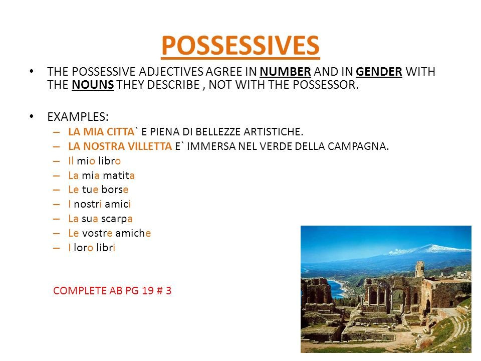 POSSESSIVES THE POSSESSIVE ADJECTIVES AGREE IN NUMBER AND IN GENDER WITH THE NOUNS THEY DESCRIBE, NOT WITH THE POSSESSOR.