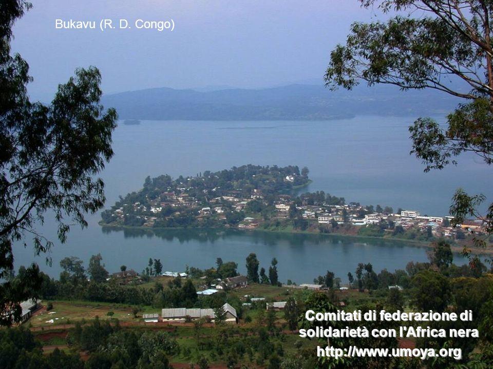 Comitati di federazione di solidarietà con l Africa nera http://www.umoya.org Bukavu (R. D. Congo)