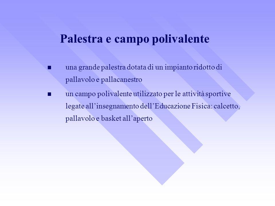 una grande palestra dotata di un impianto ridotto di pallavolo e pallacanestro un campo polivalente utilizzato per le attività sportive legate allinsegnamento dellEducazione Fisica: calcetto, pallavolo e basket allaperto Palestra e campo polivalente