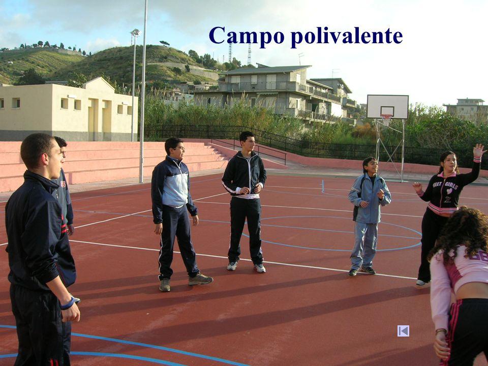 Campo polivalente