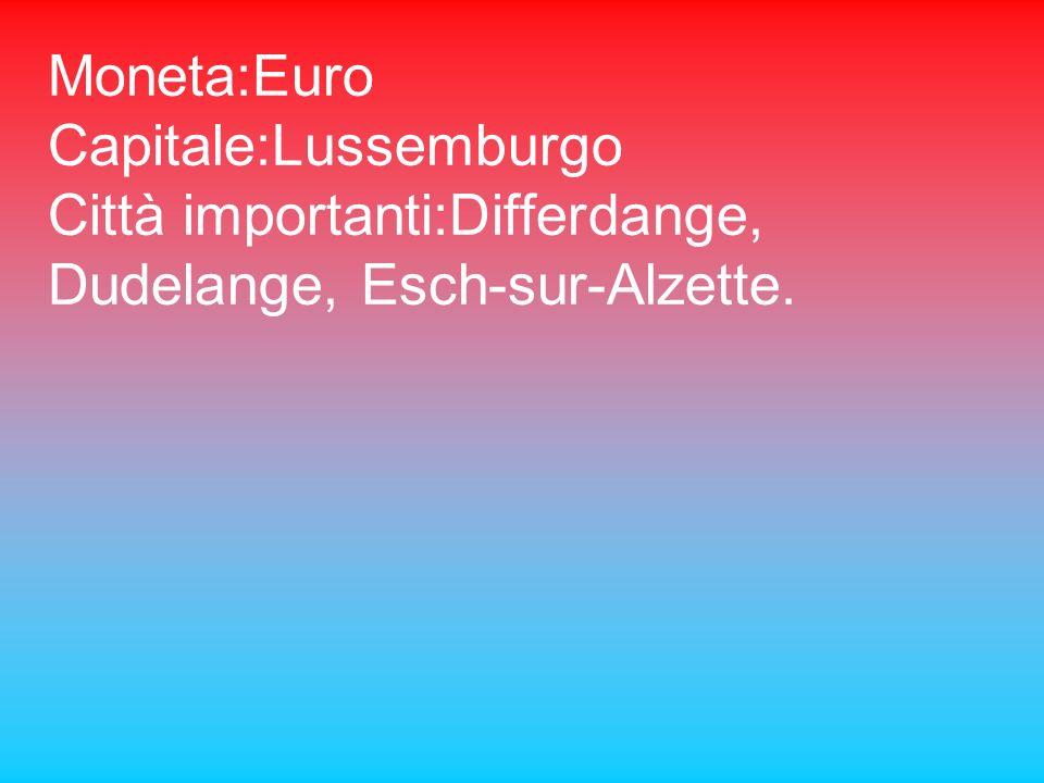 Superficie 2603 km2 Abitanti:450.000 Densità :173ab/cmq Lingua: lussemburghese, francese e tedesco Religione:cattolica Forma di governo:monarchia cost