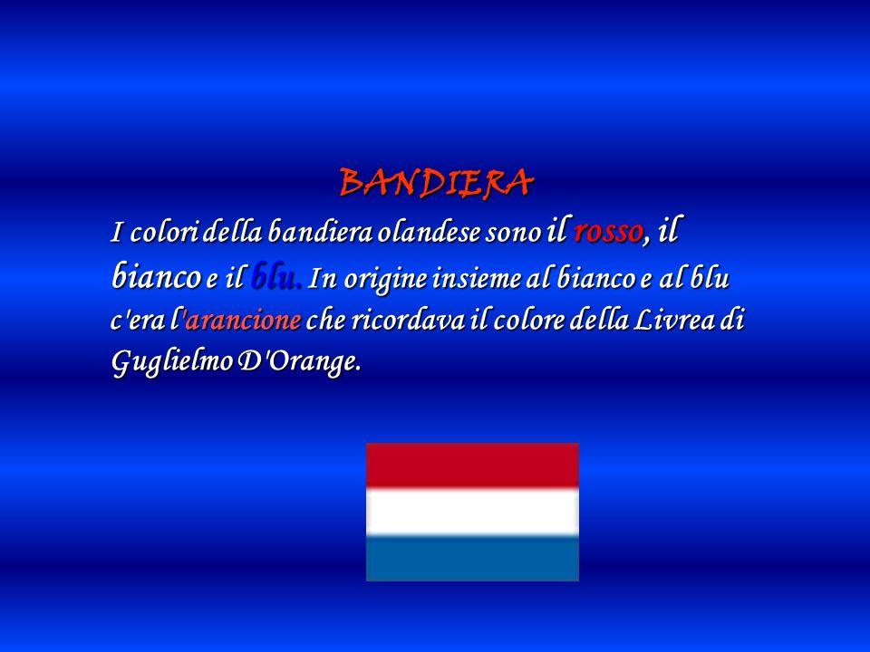 ORIGINE DEL NOME Il nome olandese
