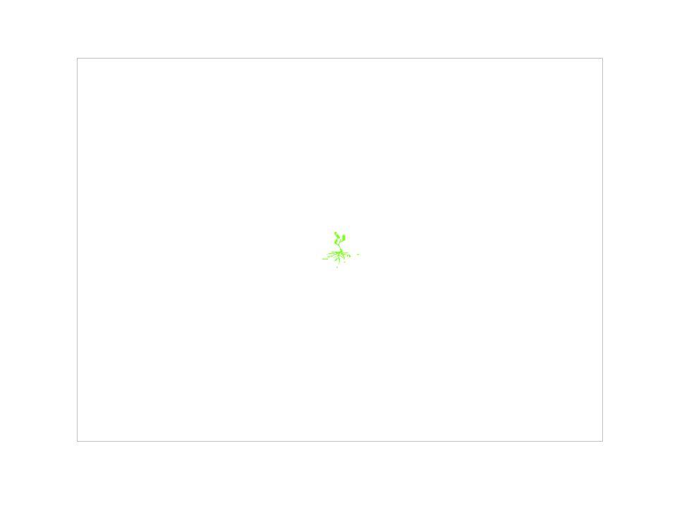 I NOSTRI CONTATTI Sito: www.nuovaculturadimpresa.itwww.nuovaculturadimpresa.it Mail: info@nuovaculturadimpresa.itinfo@nuovaculturadimpresa.it Telefono e Fax: 0883.566.912 Help Line: 389.40.28.700 Via don Luigi Sturzo, 46/a – 70031 Andria (BA) Italy