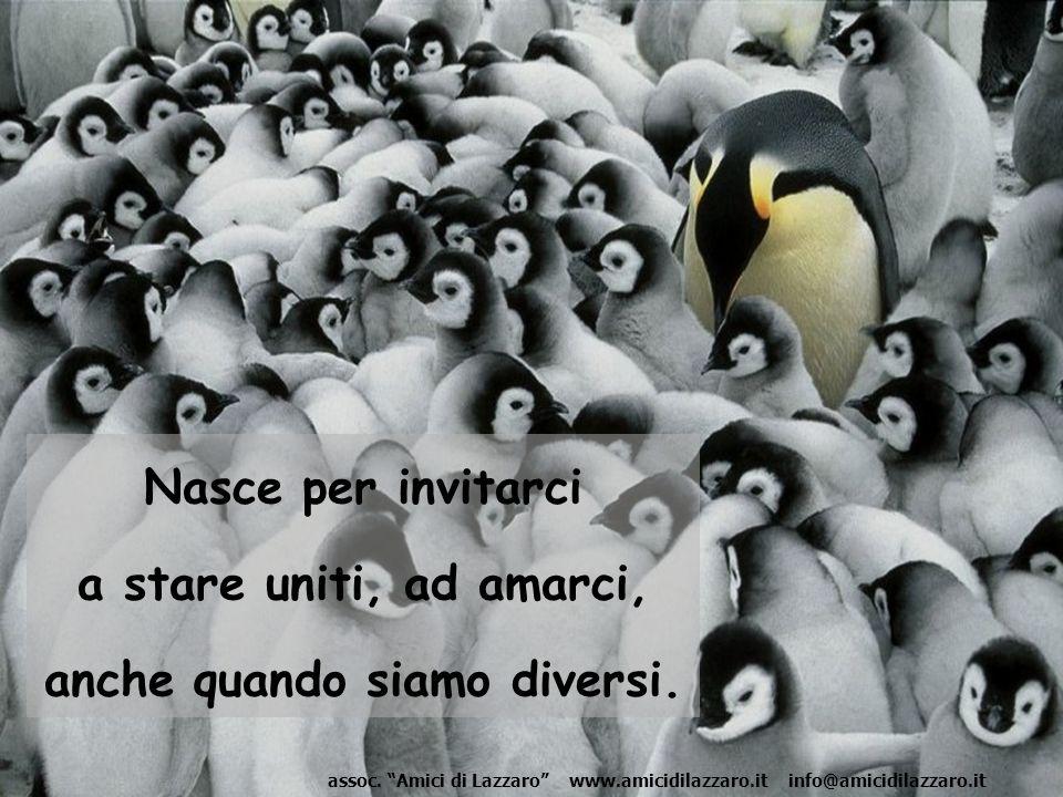 Nasce per invitarci a stare uniti, ad amarci, anche quando siamo diversi.